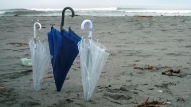 傘イン砂浜.JPG