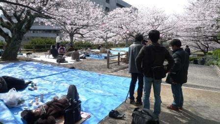 桜の撮影.JPG